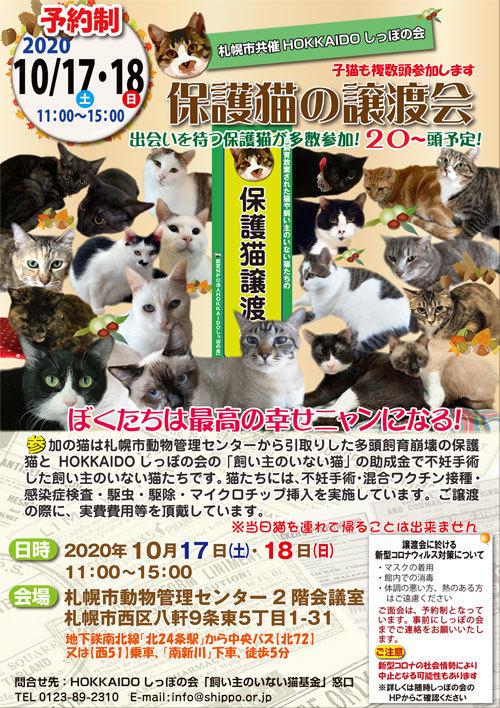 札幌市共催譲渡会2020.10.17s.jpg